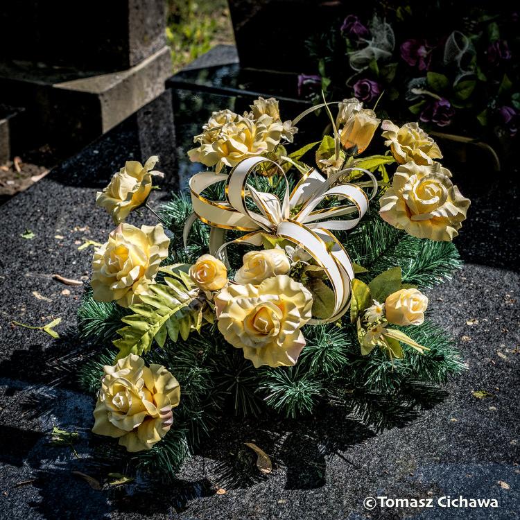 """""""Les Fleurs de l'été"""", série de photos de Tomasz Cichawa"""